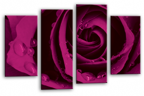 Flower Rose Wall Art Floral Picture Print Grey Purple White